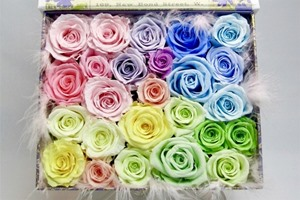プリザーブドフラワーと造花違いは何?どのくらい日持ちするの?