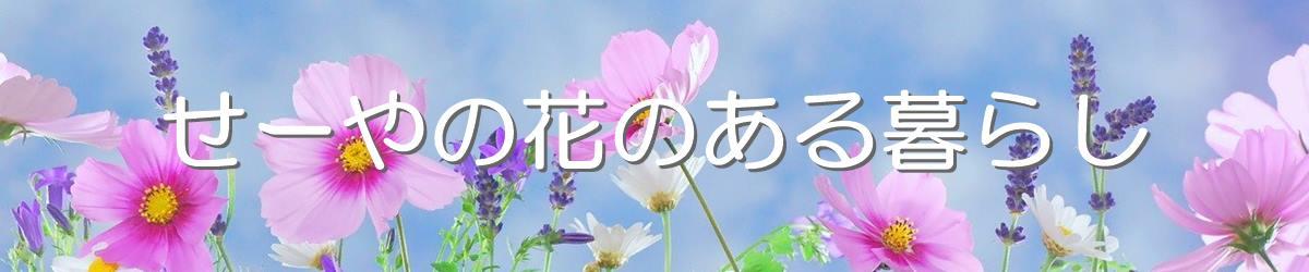 せーやの花のある暮らし